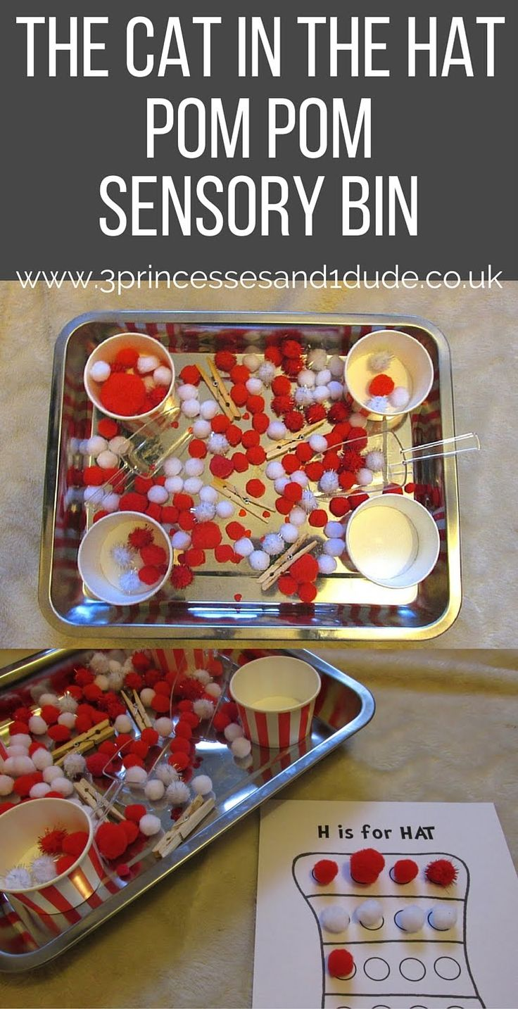 3 Princesses and 1 Dude!: Activity Time. Cat In The Hat Pom Pom Sensory Bin