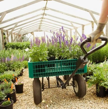 20 Secrets to Landscape Success. Shop wisely. Landscaping -labor, plants and materials- may be much more expensive than you think. Do some comparison-shopping at local garden centers, and check prices at online nurseries, too. Create a budget and a priority list if you're not able to afford everything at once.