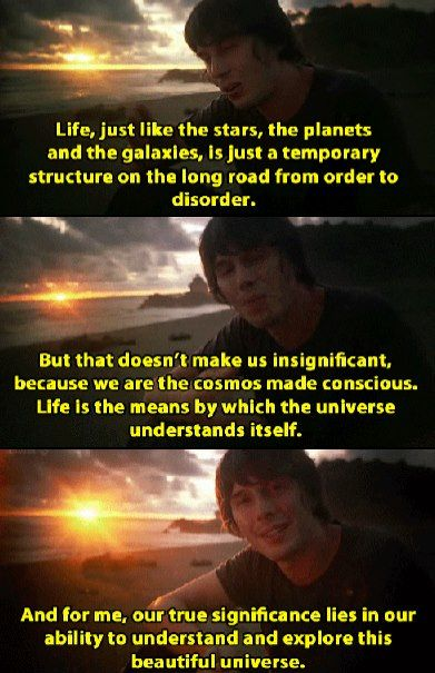 """We are the cosmos made conscious. Life is the means by which the Universe understands itself."" ~Brian Cox"
