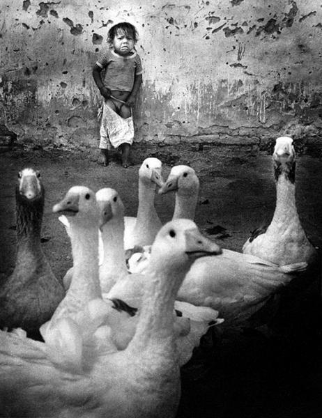 Pedro Luis Raota (1934-1986),argentino,catalogado como uno de los mejores, fotografos del mundo