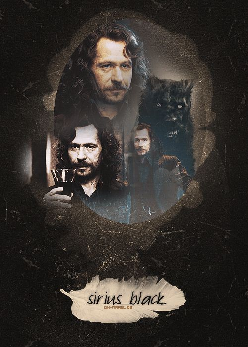 Day 8: favorite maruador, Sirius Black