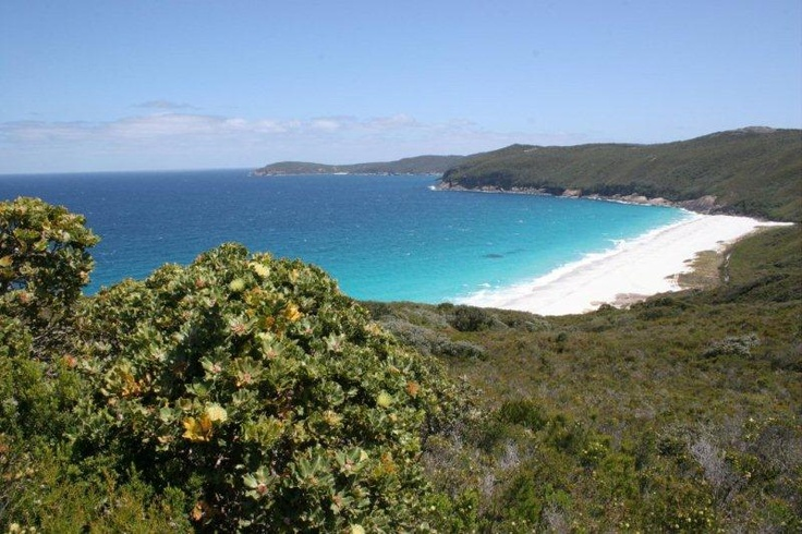 The Bibbulmun Track - overlooking Dingo Beach