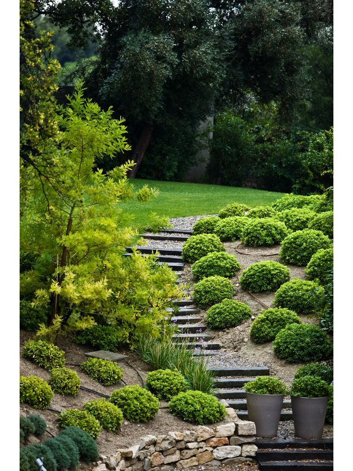 Do It Yourself Cheap and Easy Backyard Landscaping Solutions for Steep Grassy Hills | eHow
