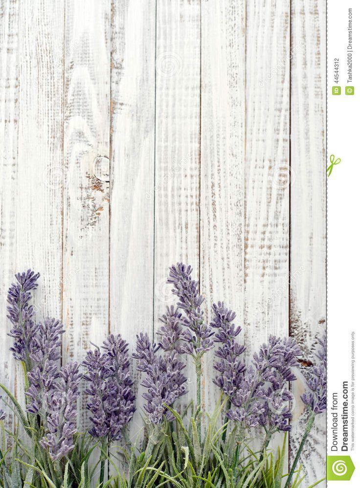 Bouquet Lavender Stock Photo - Image: 44544312 #lavender