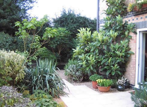 another john brookes garden in sussex a retired lady moved to this ground floor apartment
