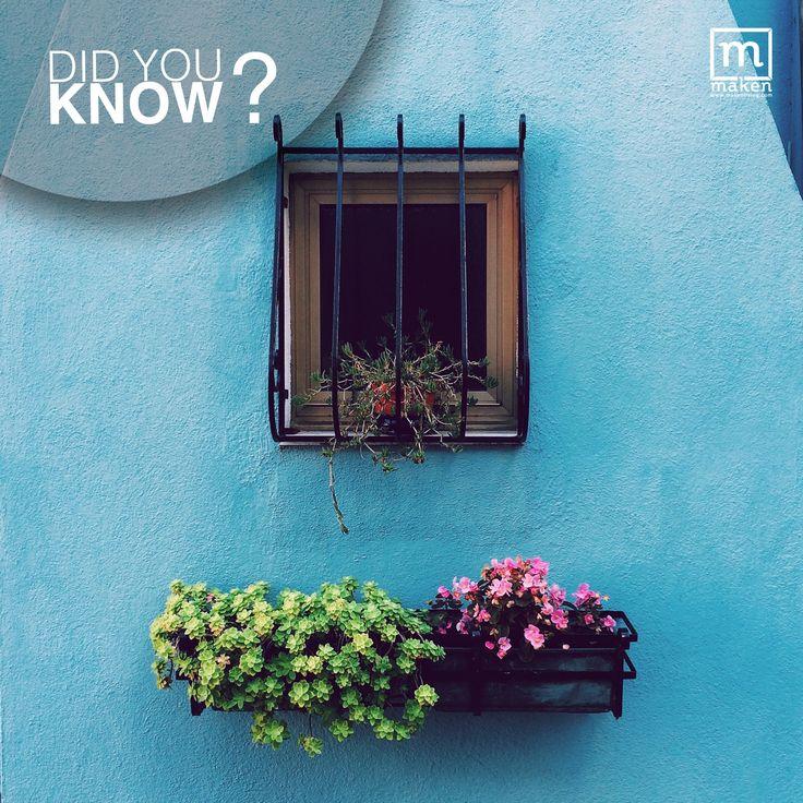 DID YOU KNOW?  Biru merupakan warna laut dan langit yang memberikan ketenangan, kesunyian, kedamaian, kenyamanan dan perlindungan. Ngga hanya itu saja, warna biru juga memberikan kesan lega dan luas. Hmm sangat cocok untuk warna kamarmu ya!
