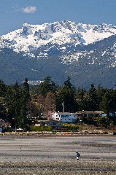 Mt Arrowsmith The grand old lady of the valley.  Port Alberni, British Columbia