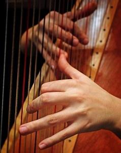 1. Er was 1 vrouw in het orkest die de Harp bespeelde.