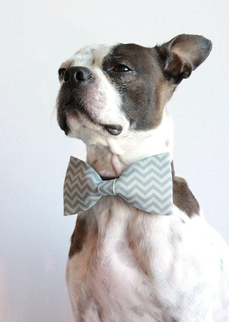 Grey Chevron Geometric Dog Bow Tie  - Wedding Accessories for Dogs - Dog Collar Accessory. $13.75, via Etsy.