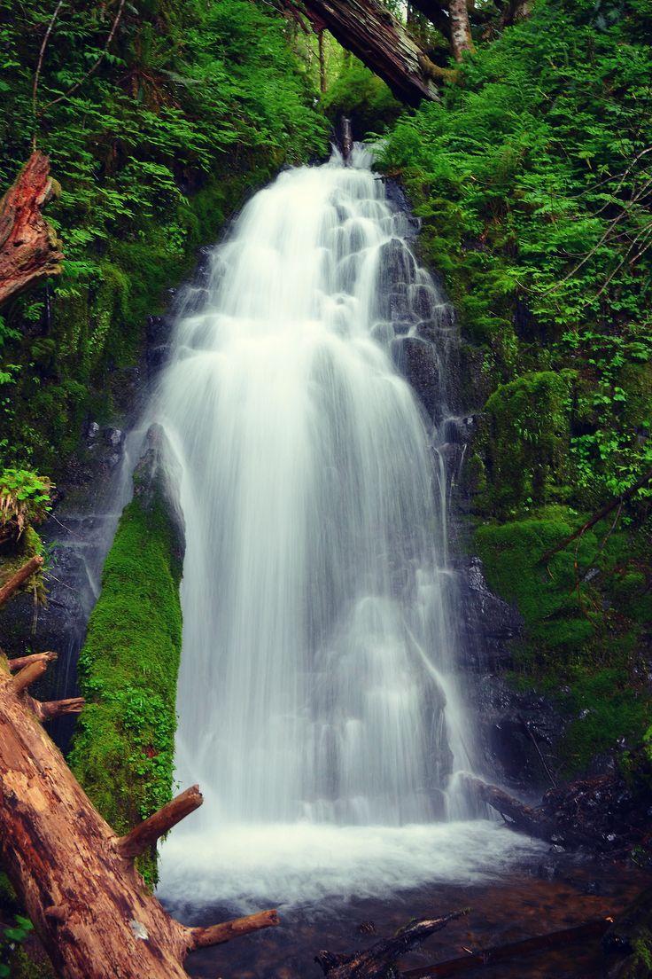 Fern Creek Falls | Tillamook, Oregon //by Lydia Emily Bashaw
