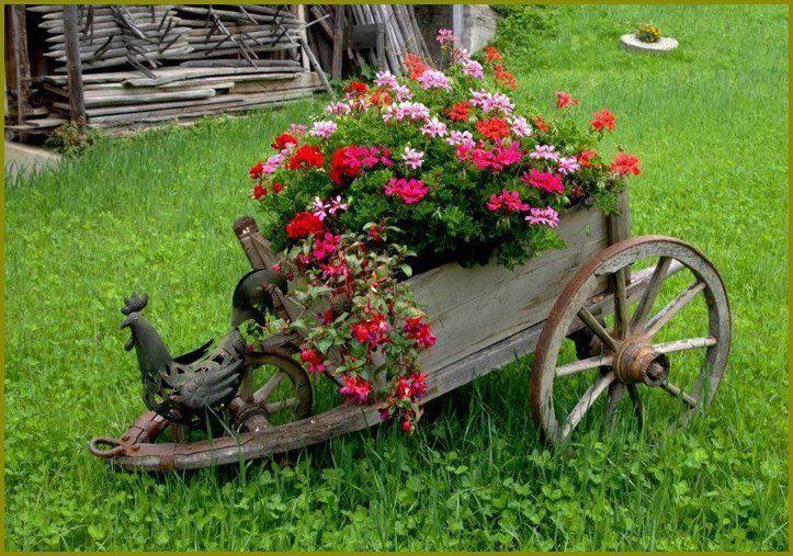Fika a Dika - Por um Mundo Melhor: Decore seu Jardim 1