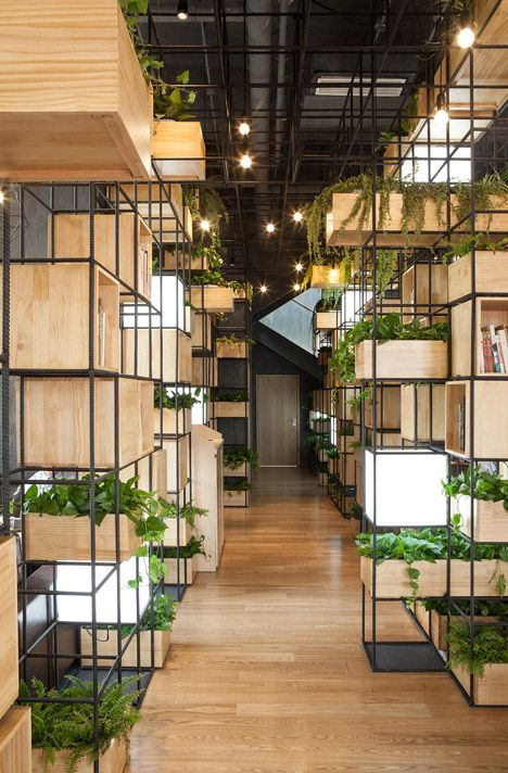 pendas indoor planting modules provide a green oasis inside home cafe