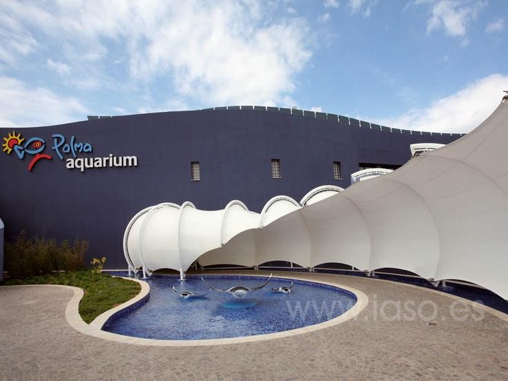 aquarium1G.jpg 1,024×768 pixels