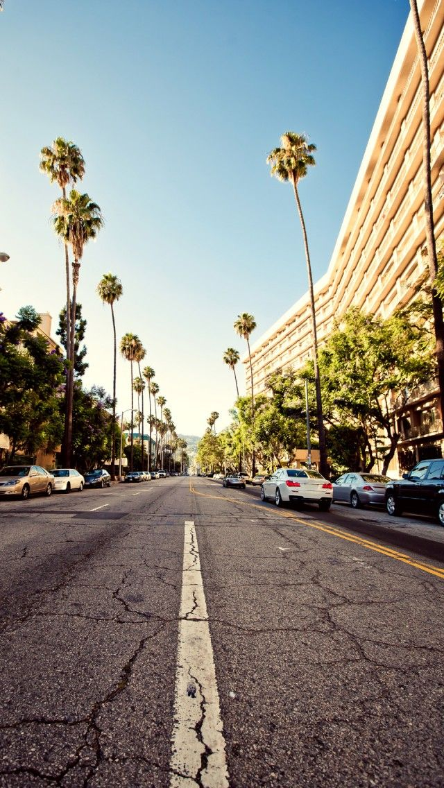 I'm going to Beverly Hills one day. Each time I watch 90210, I get a glimpse of the beautiful scenary and I feel like I belong there. LA is where i'm going to go. For sure. There's no doubt about that. One day in my life. Maybe i'm going to live there, who knows? Or just going to go on vacation and fall in love with the place. Los Angeles in where I belong.