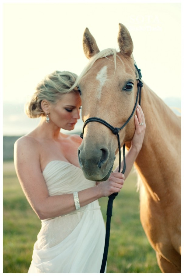 Horse Lovers.