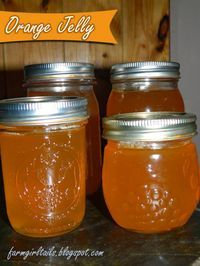 Farm Girl Tails: Homemade Orange Jelly - this recipe makes the best Orange jelly. I use my Green Star juicer to juice the oranges instead of using cheesecloth, etc. I give this 5 out of 5 AMD.... 3 1/2 cups  freshly squeezed orange juice (approx. 8-10 medium to large ripe oranges) 1  box (1 3/4 oz)  pectin 5 cup sugar