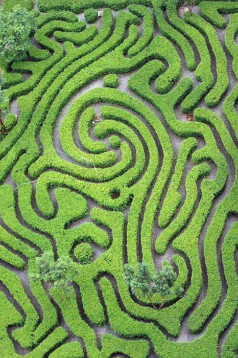 Maze Garden, Kuala Lumpur, Malaysia Copyright: chai TY