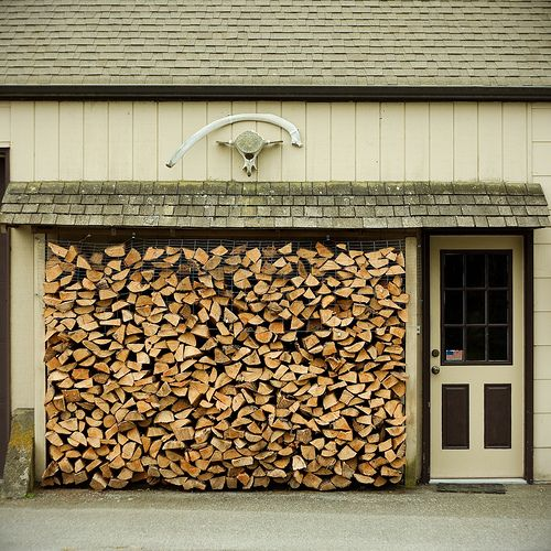 Charming I Love A Log Pile Great Pictures