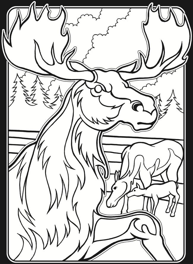 In The Wild Stained Glass Coloring Book Dover Publications