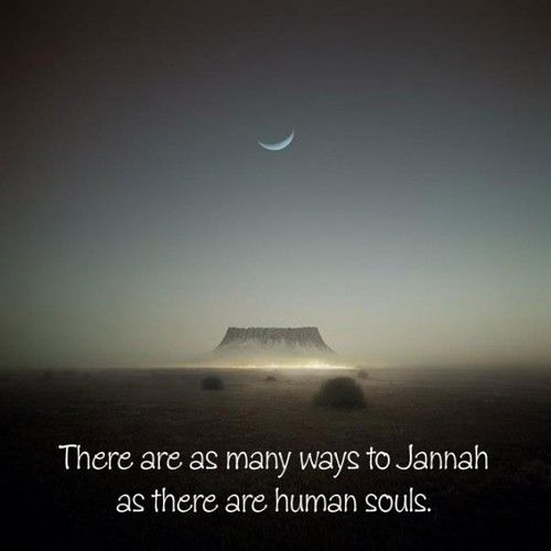 There isn't just one way to Jannah!   #Jannah #Islam