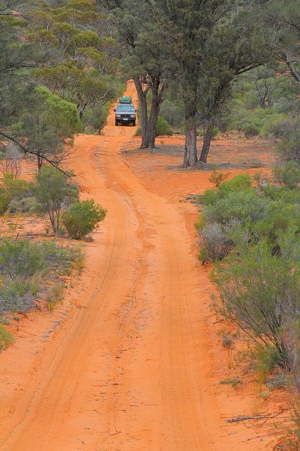 Googs Track Australia by tim phillips photos, via Flickr