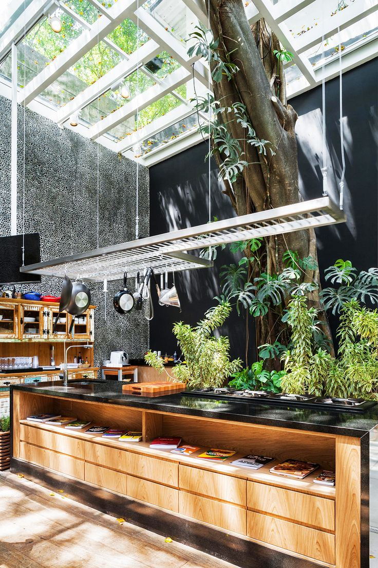 Outdoor kitchen planned around trees and plants with wood cabinets and shelves, glass ceiling, black wall, and wood floors