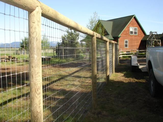 Best images about dog and horse fencing on pinterest