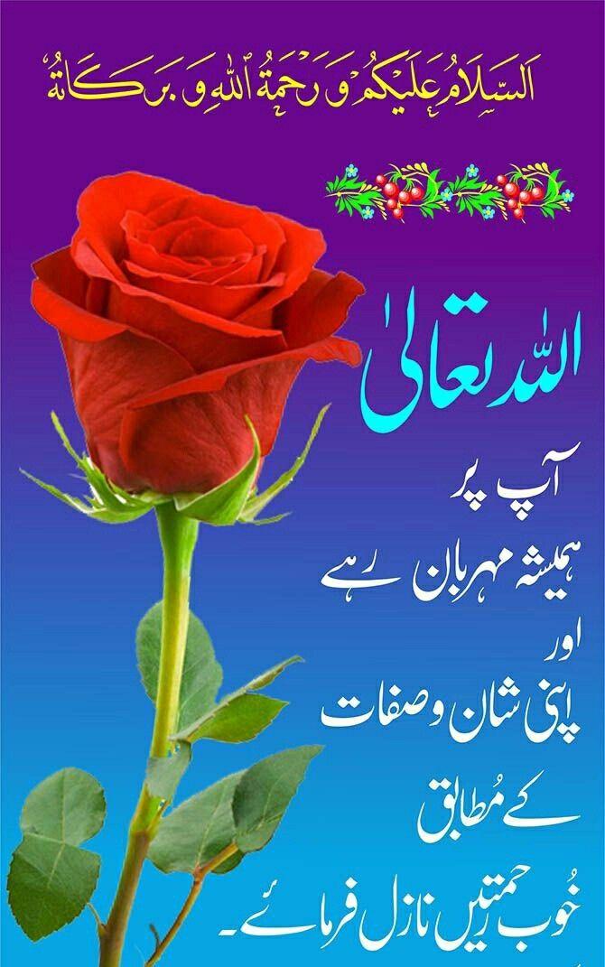 Ameen!   Dua!   Good morning quotes, Dua in urdu, Morning quotes