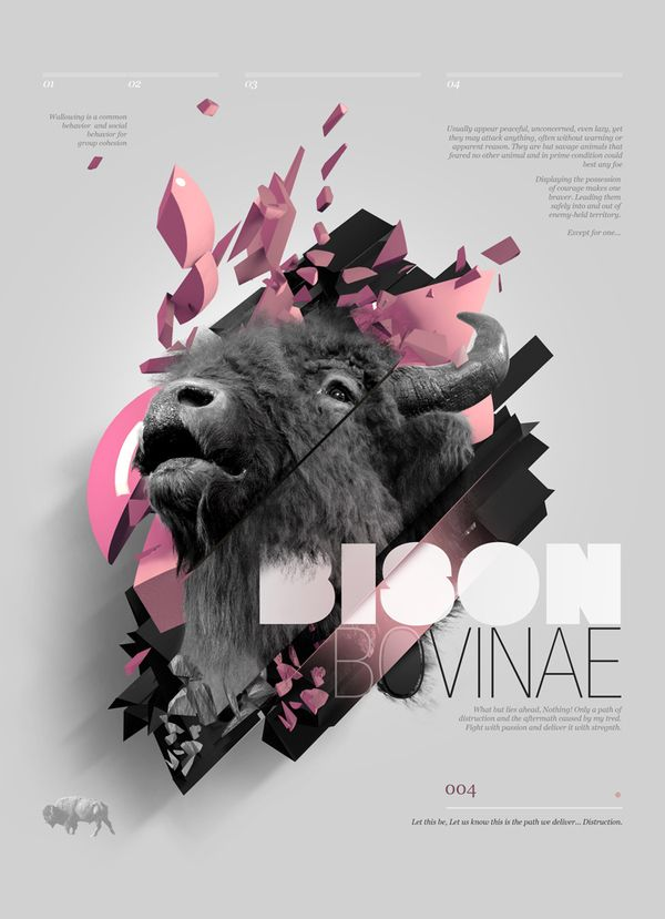 """Bovine Series"" - Bison __ Design © Aldo Pulella __ #inspirational #creativity #concept #art #direction #graphic #design #editorial #digital #typography #photography #behance"