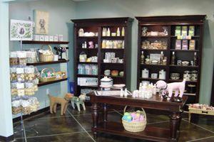 Pet Boarding Facility, Spa, and Stylish Paw Boutique in Novi, MI