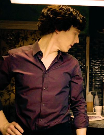 A Beginner's Guide to The Sherlock Fandom, The Purple Shirt of Sex: I'm so glad this exists!
