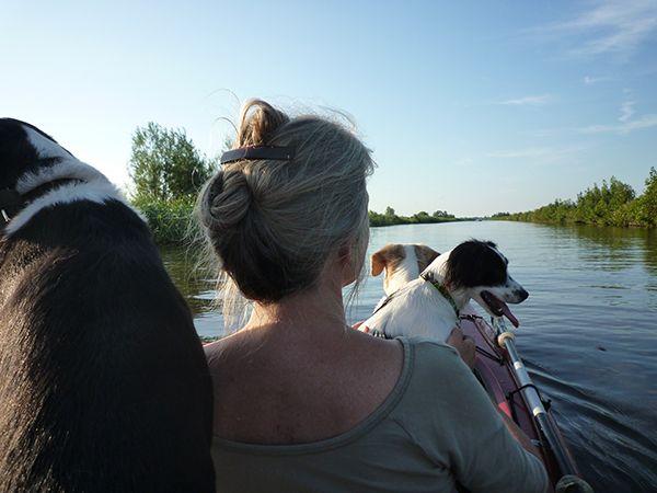 Een kanotrip met 3 honden! Het kleine zwarte hondje is een loge. Ze blijft ruim 2 weken, dus daar heb ik het ook druk mee …