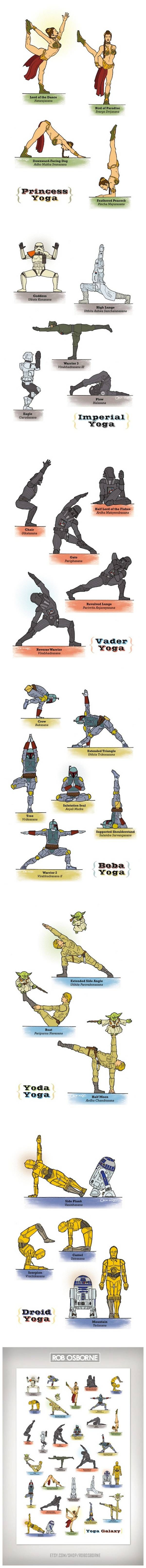Silly? Absolutely. But you better believe my yoga positions will be coming from this diagram right here.