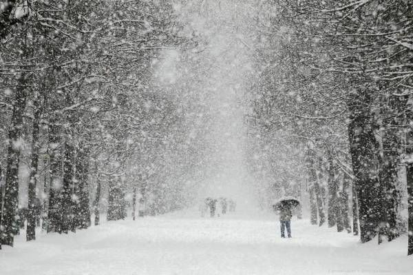 В Хакасии из-за снегопада введен режим ЧС http://actualnews.org/exclusive/201693-v-hakasii-iz-za-snegopada8205-vveden-rezhim-chs.html  В Хакасии из-за сильного снегопада, введен режим ЧС. Распоряжение подписал Виктор Зимин, глава республики. Сведения предоставлены пресс-службой правительство и размещены в СМИ.