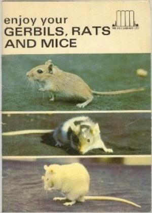 75 best rats love non fiction images on pinterest pet rats enjoy your gerbils rats and mice the helen perley fandeluxe Choice Image