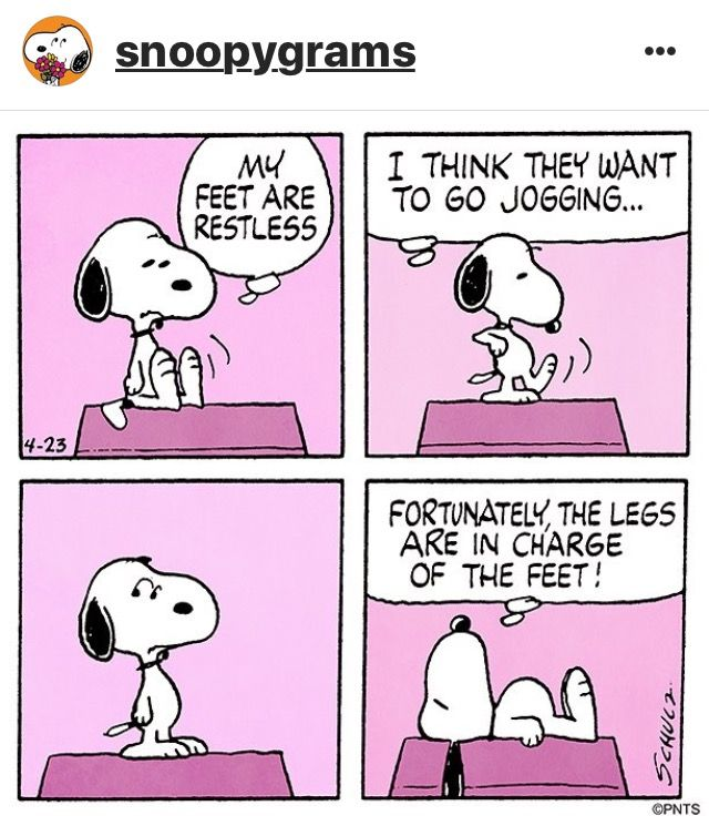 Snoopy from Peanuts by Charles Schulz