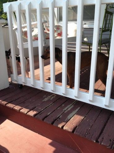 Porch Gates For Dogs | Porch Gate | Leading The Good Life