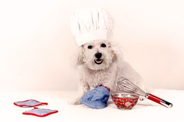 Find ideas for some delicious homemade dog food and surprise your furry friend at http://dogycuisine.weebly.com/recipes.html