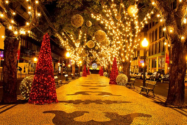 Christmas in Funchal, Madeira by JayGriffin  http://www.travelandtransitions.com/destinations/destination-advice/europe/madeira-portugal/