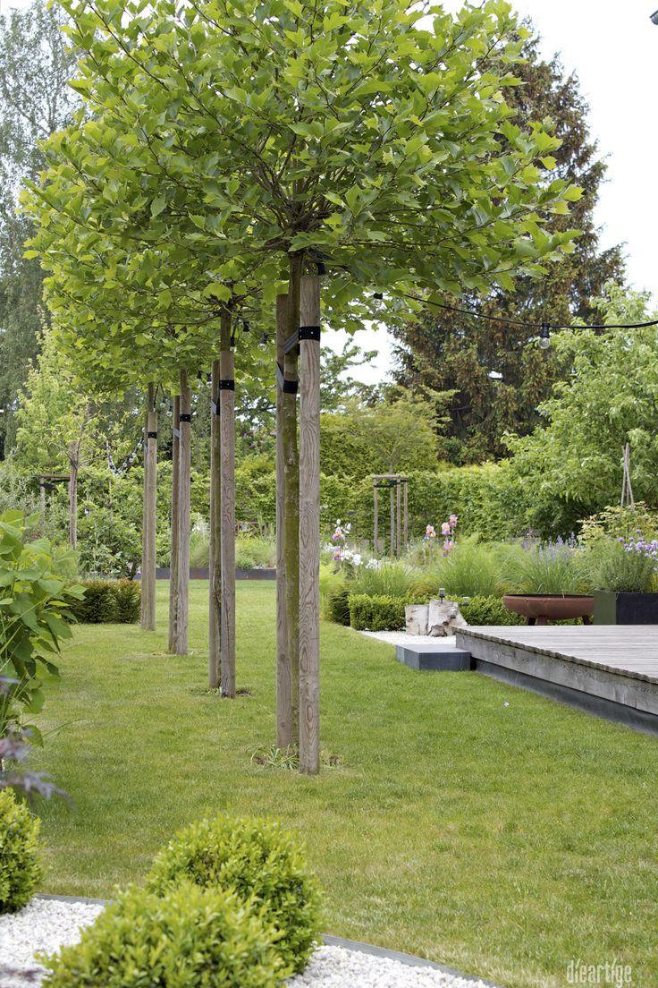 239 best Ideen Hofgestaltung images on Pinterest | Gardens ...