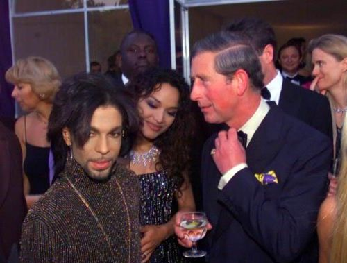 Prince & The Prince: Celebrity, Purple, Royals, British Royalty, Famous People, Prince Charles, Rare Photographers, Music Artists, Doctors Songs