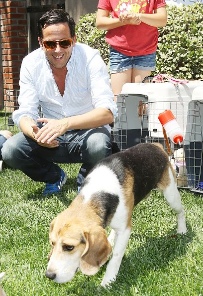 Ross McCall attends The Beagle Freedom Project on april 14 2015