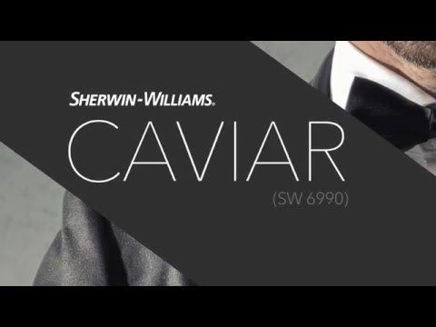Sherwin Williams Caviar. This might be the colour for my master bedroom!