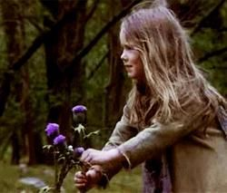 The power of one flower <3