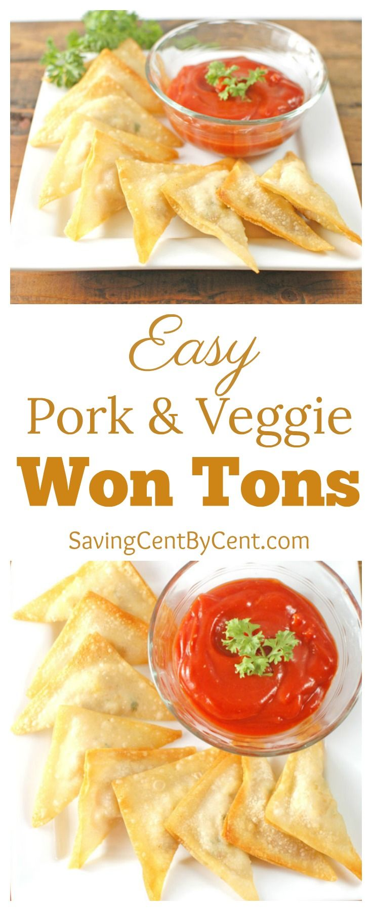 Easy Pork U0026 Veggie Won Tons