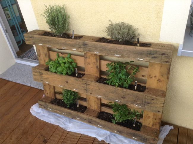 Learn how to grown plants anywhere with this wood pallet - Que puedo hacer con un palet ...