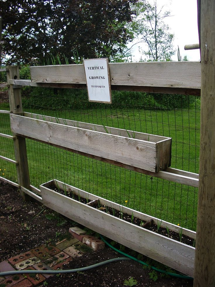 61 Best Small Garden Fence Ideas Images On Pinterest