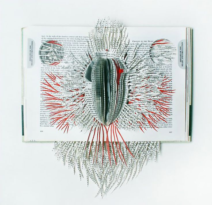 Book Artworks by Barbara Wildenboer