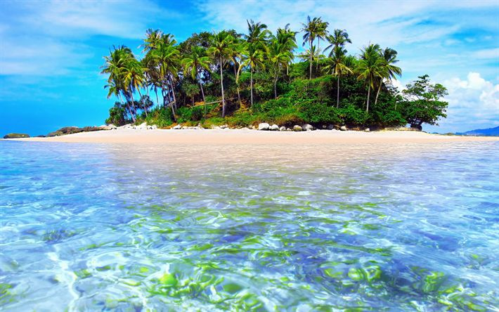 Hämta bilder ocean, tropiska ön, beach, palms, sommar, resor koncept, vågor, havet