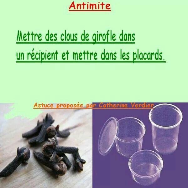 Anti mite naturel... ...